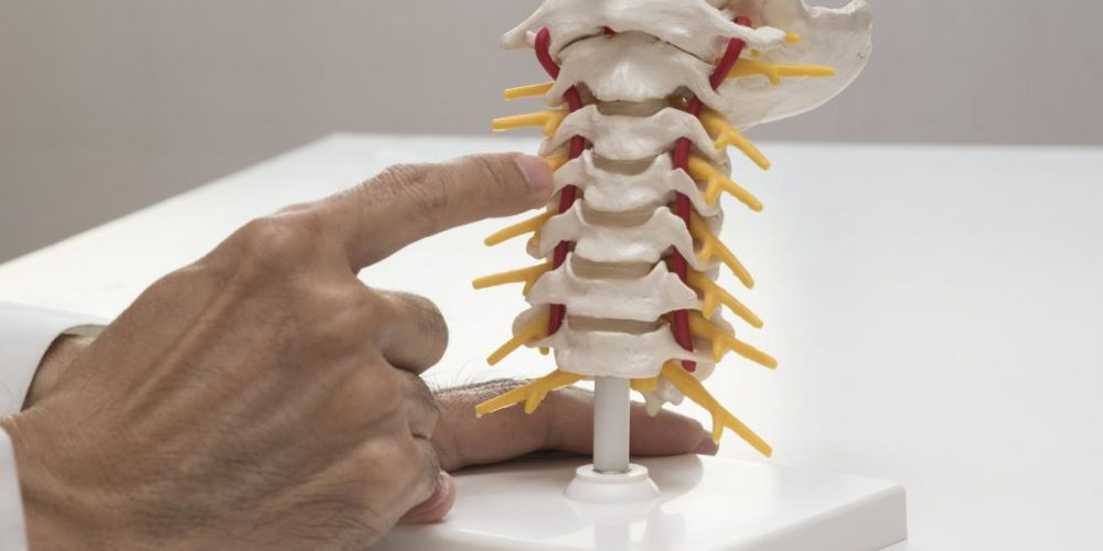 Implants 'made of your own cells' could end back pain