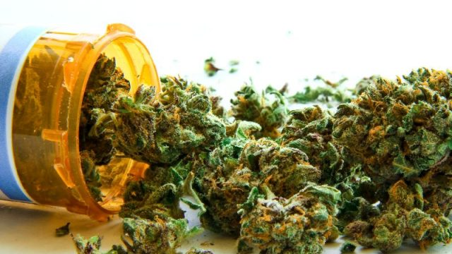 Legalizing Medical Pot Won't Ease Opioid Crisis: Study