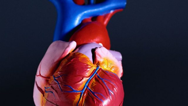 The Earlier You Develop Type 2 Diabetes, the Greater Your Heart Risks