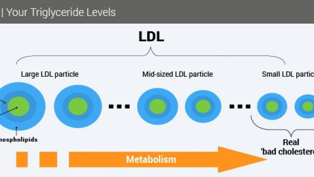 Triglycerides (Tests and Lowering Your Triglyceride Levels)
