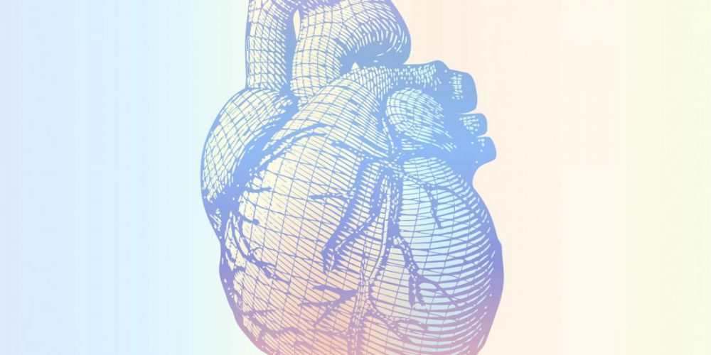 How an omega-6 fatty acid may keep heart disease at bay