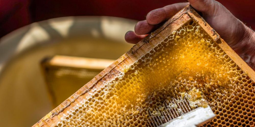 What are the health benefits of raw honey?