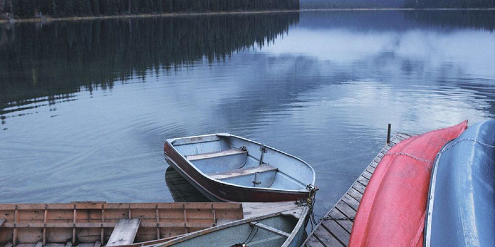 50 Years After Ban, Canadian Lakes Still Have High Levels of DDT
