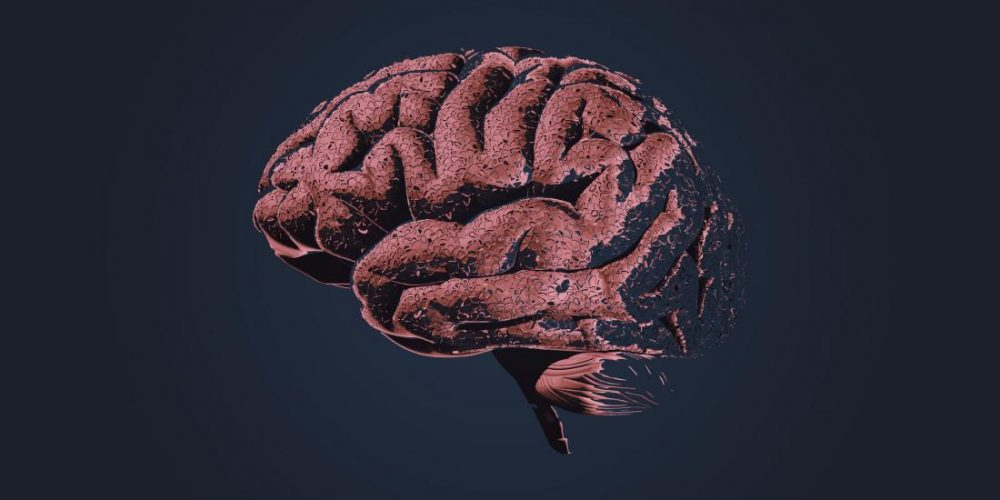 Alzheimer's: What leads to brain cell damage?