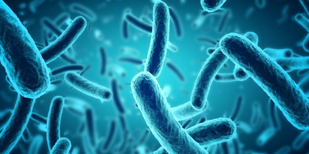 Drug resistance: 'Trojan horse' compound kills bacteria from within