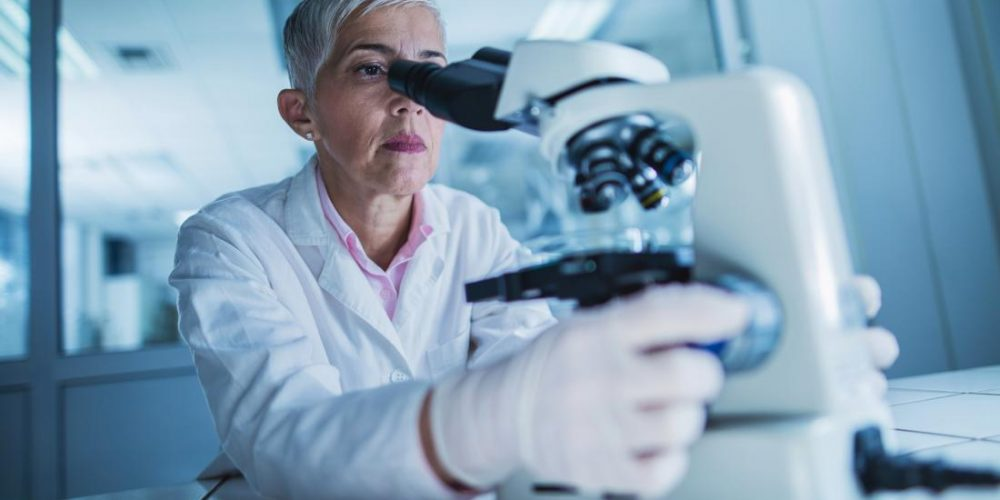 Gut microbes can spur immune system to attack cancer