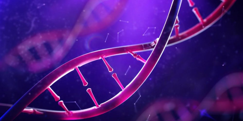 Liver health in HIV: This gene indicates new therapeutic targets