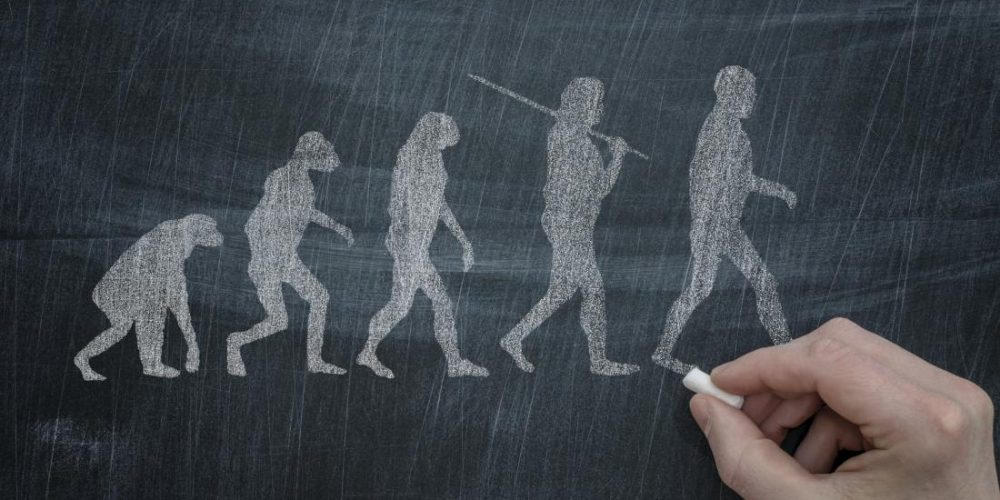 New research may explain why evolution made humans 'fat'