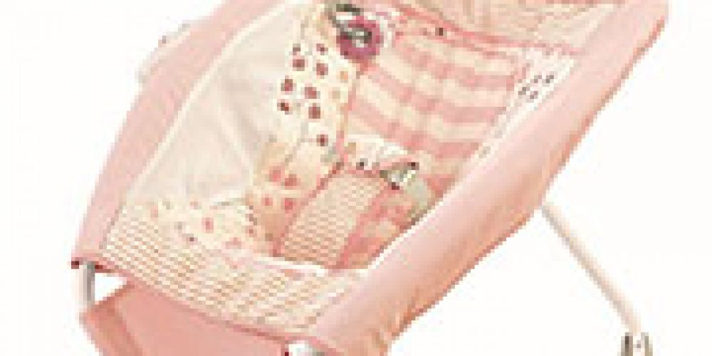 Ten Infant Deaths Linked to Fisher-Price Rock 'N Play Sleepers