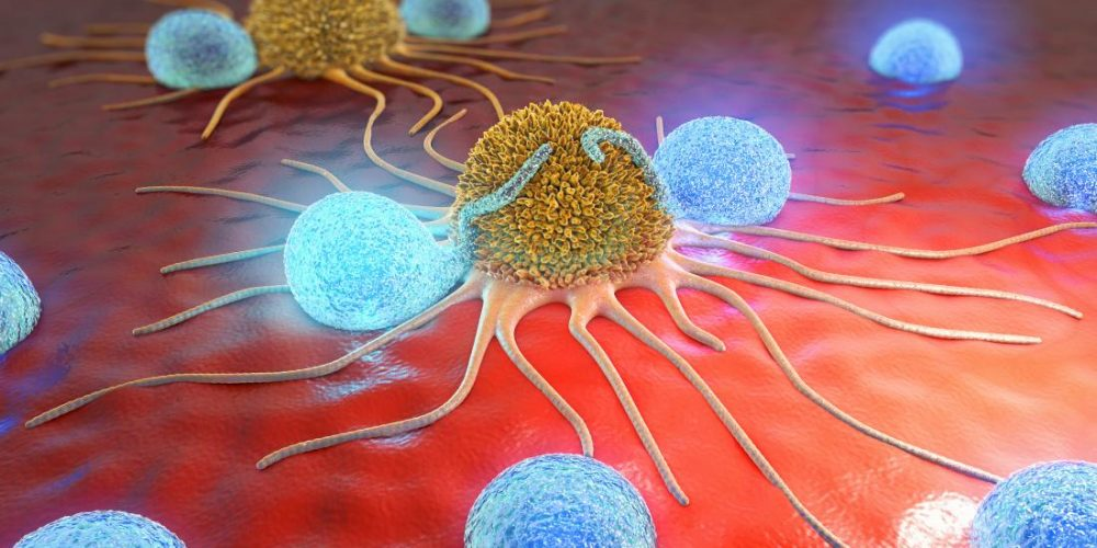 How lung cancer cells disguise themselves to evade chemo