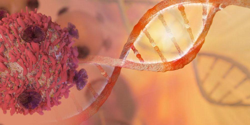 Huntington's 'super assassin' molecule could kill cancer