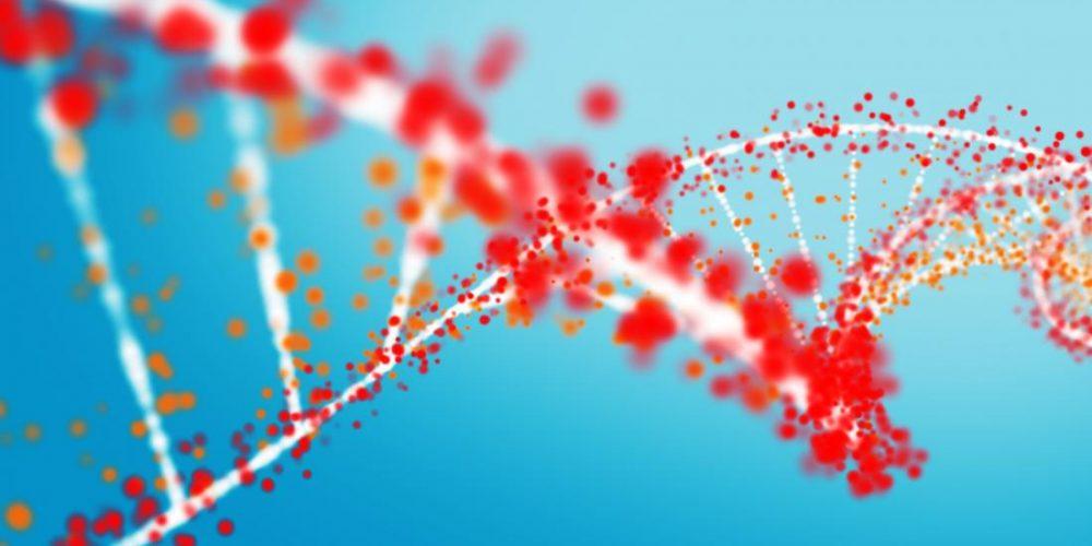 Alzheimer's: Common gene explains why some drugs fail