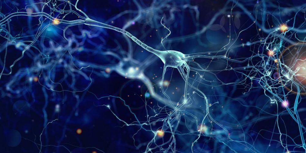 Brain changes may explain why exercise relieves autism in mice
