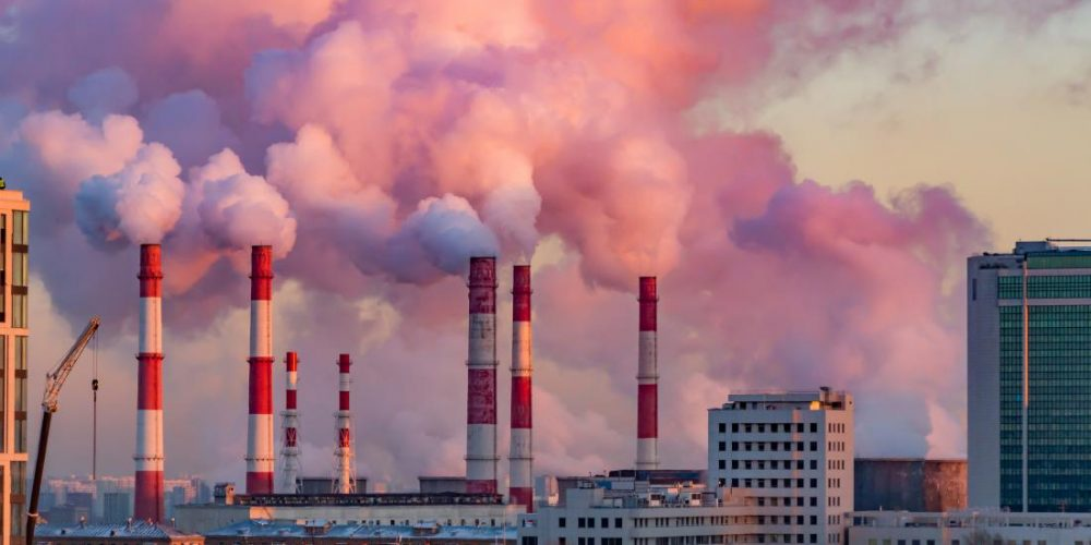 Exploring how pollution might impact the brain