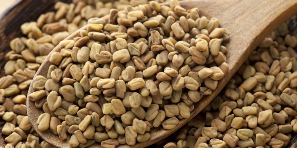 Is fenugreek good for you?