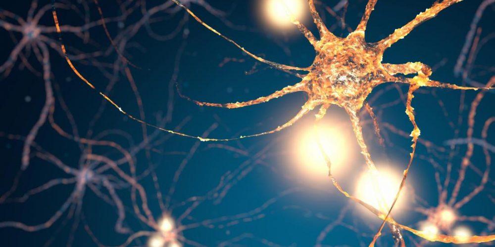 Simple drug formula regenerates brain cells