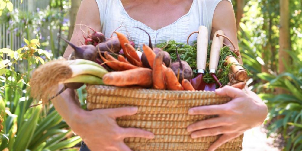 What is the difference between veganism and vegetarianism?