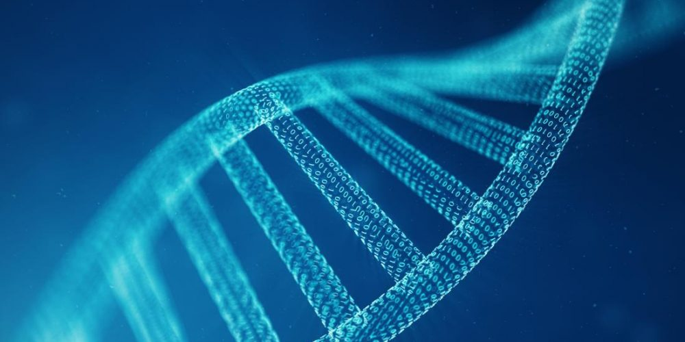 Cancer: These 4 genes help predict outcome