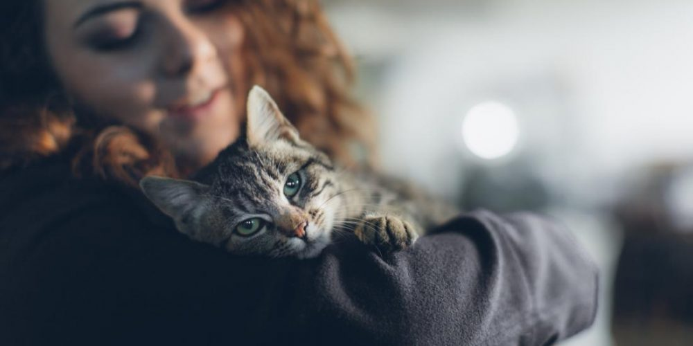 More evidence that pets benefit mental health