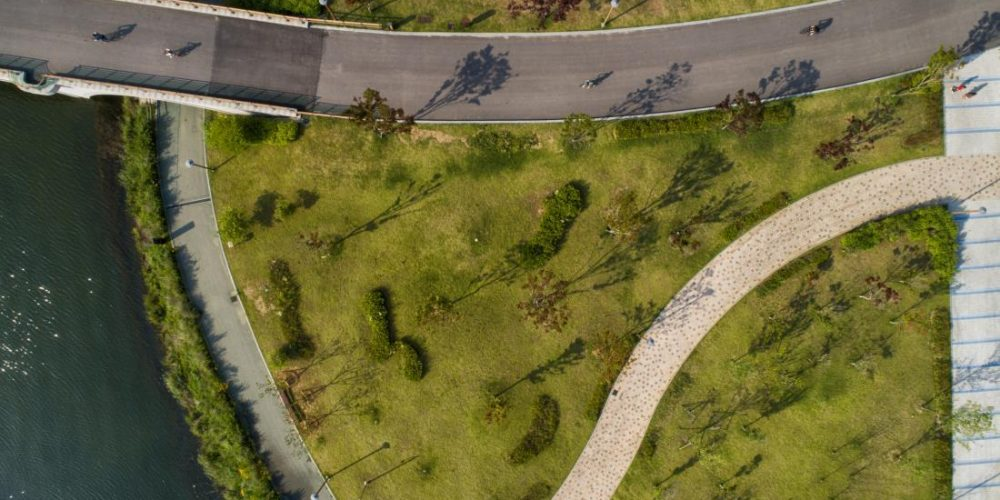 Parks with irregular shapes may boost longevity