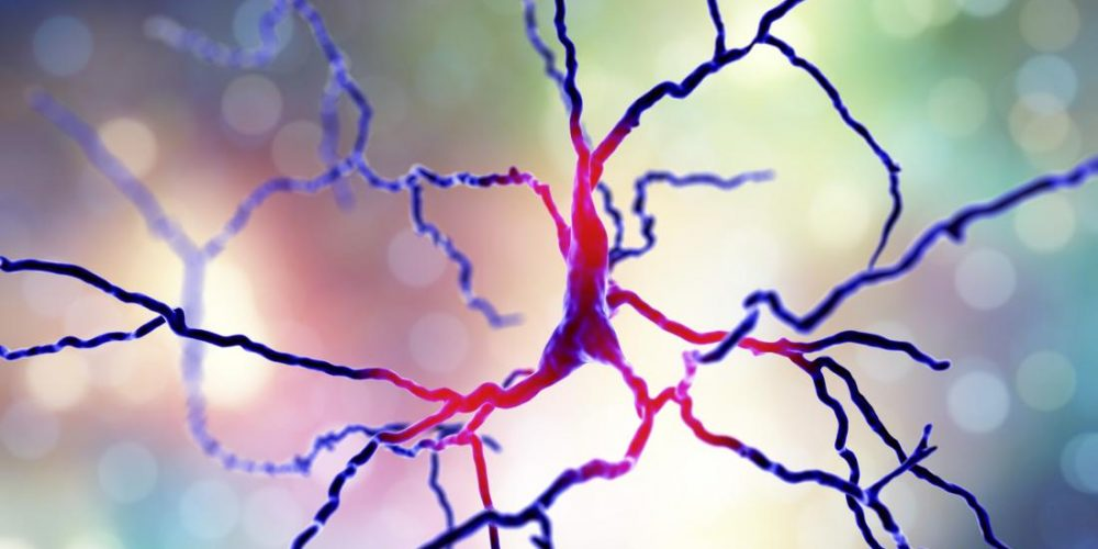 Parkinson's: New treatment approach shows promise in brain cells