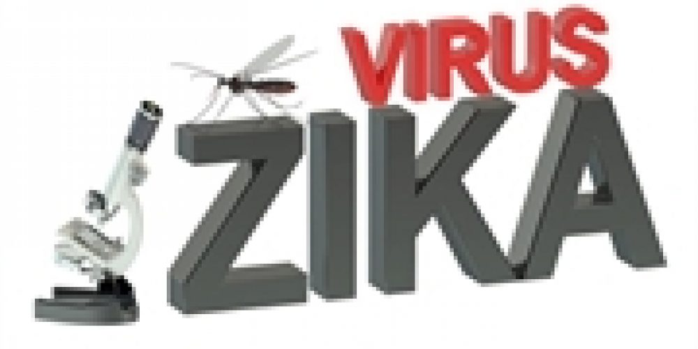 Study Gives Hope for Zika Vaccine That Might Shield the Fetus