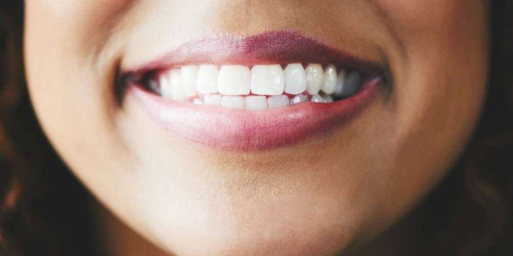 Teeth: Names, types, and functions