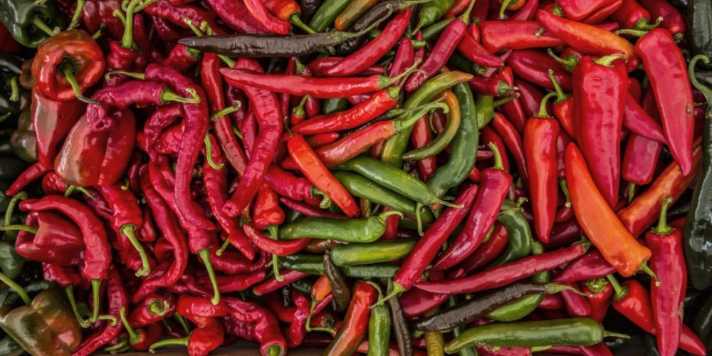 Could hot chili peppers reduce mortality risk?