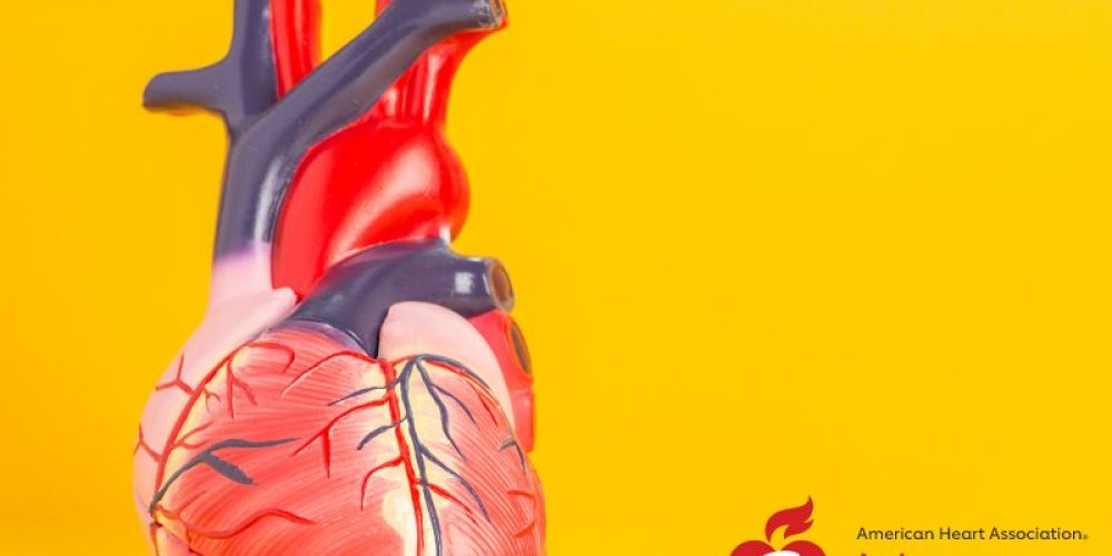 AHA News: Expert Heart Advice for Rare Genetic Muscle Disorder