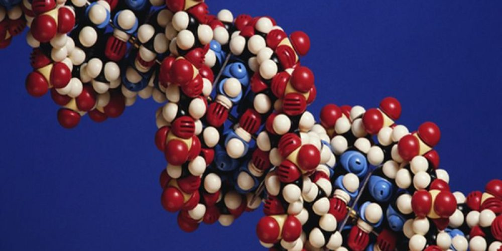 How to Protect Your DNA for Big Health Benefits