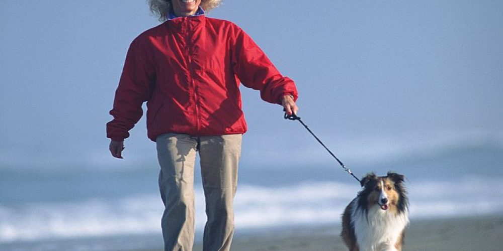 Brief Morning Exercise Helps Ease Blood Pressure Throughout the Day