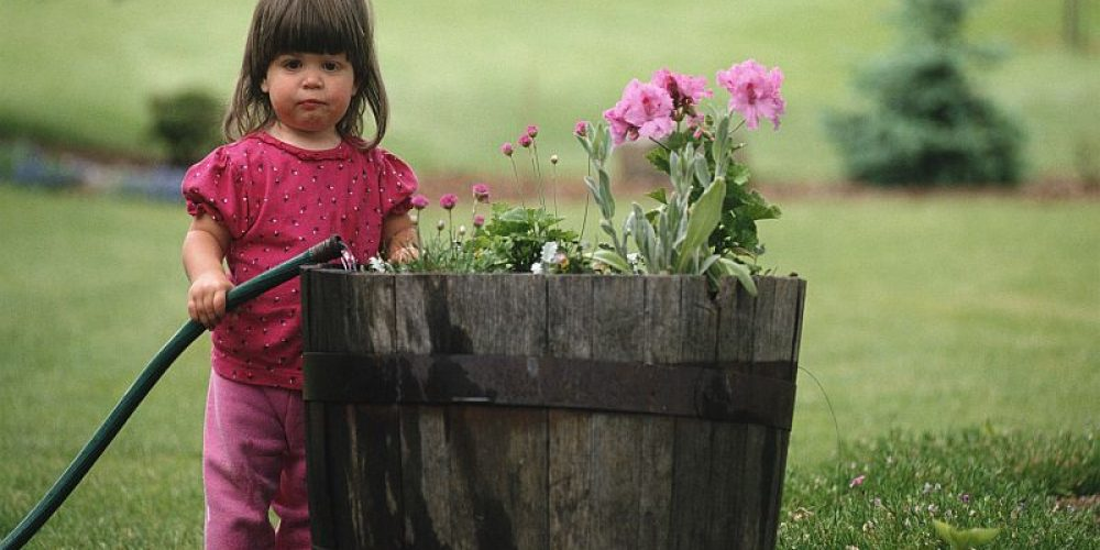 Make a Plan for Gardening Next Spring With Your Kids