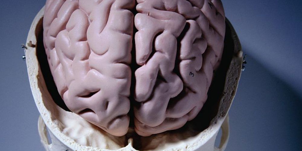 After Concussions, Some Ex-Athletes Show Key Marker for Brain Disease: Study