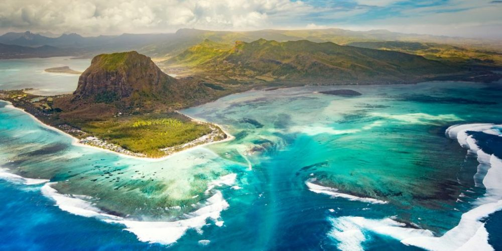How plants from Mauritius could help fight cancer