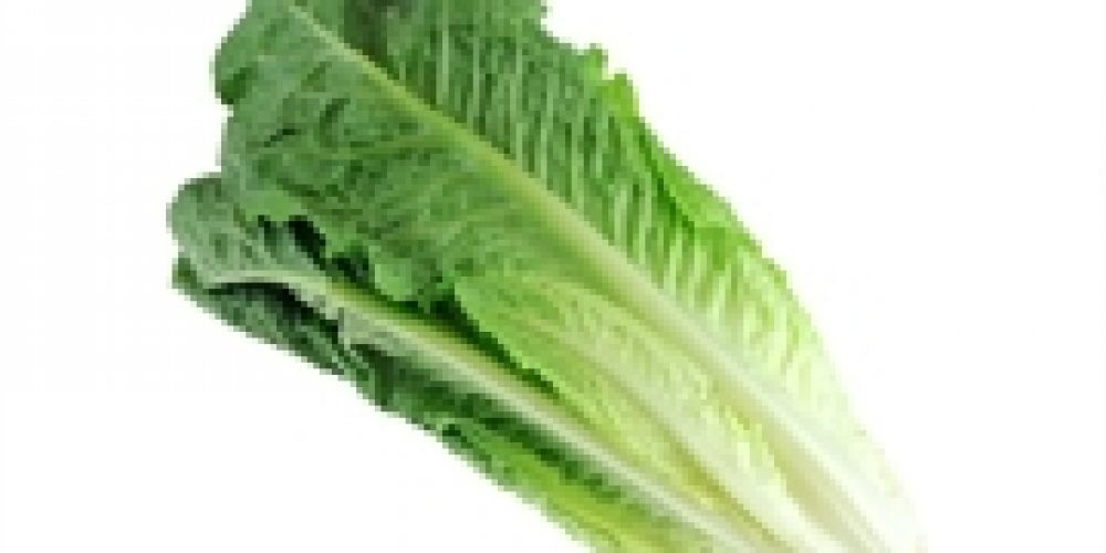 More E. coli Illnesses Linked to Tainted Romaine Lettuce
