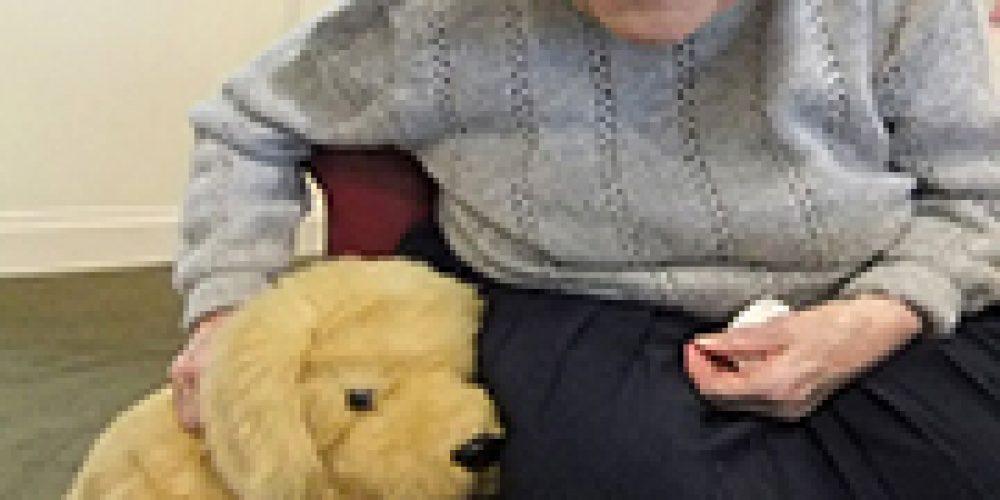 'Robopets' Bring Companionship, Calm to Nursing Home Residents