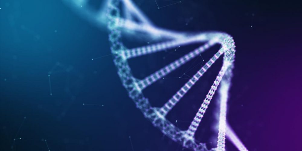 Alzheimer's risk gene and heavy metal exposure may impair cognition