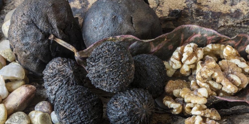 Are black walnuts good for you?