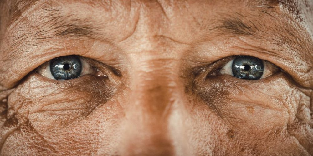 Could the eyes predict cardiovascular risk?