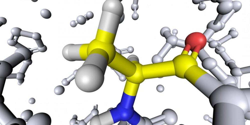 Could this amino acid improve glucose control in diabetes?
