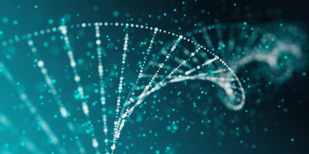 'DNA origami' tackles multidrug-resistant cancer cells
