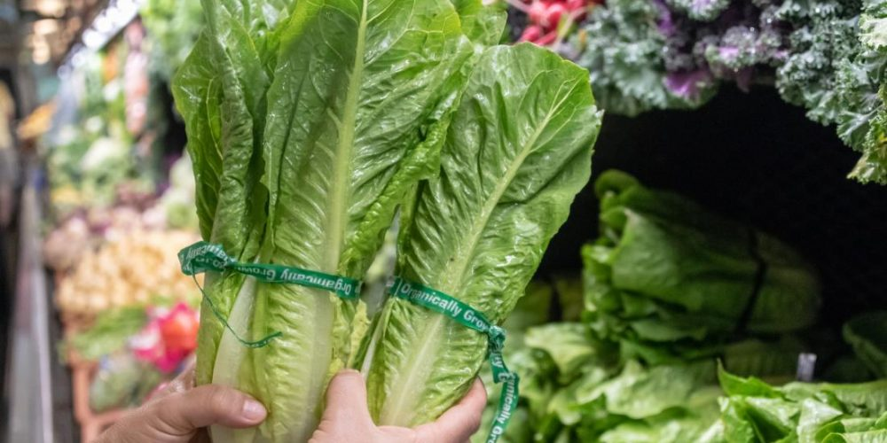 E. coli outbreak: CDC warn about romaine lettuce from Salinas, CA
