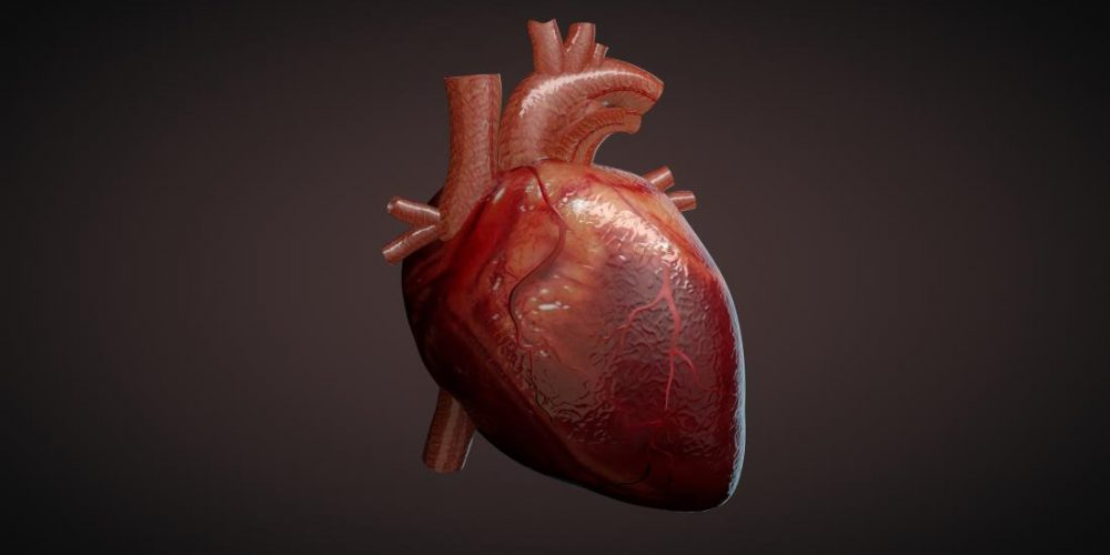 Using small molecules to regenerate heart tissue