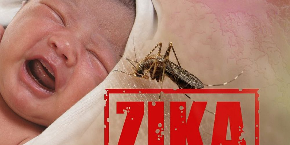 Zika's Damage Continues in Children Infected Before Birth