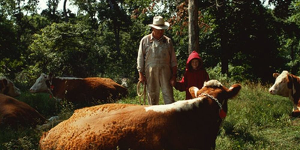 Q Fever? A Bigger Threat to Humans Than Thought