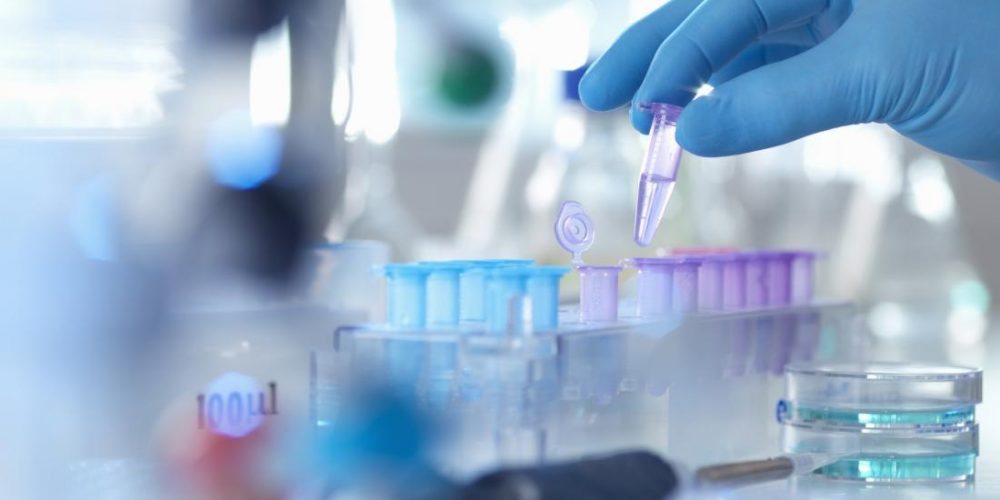 2019 in medical research: What were the top findings?