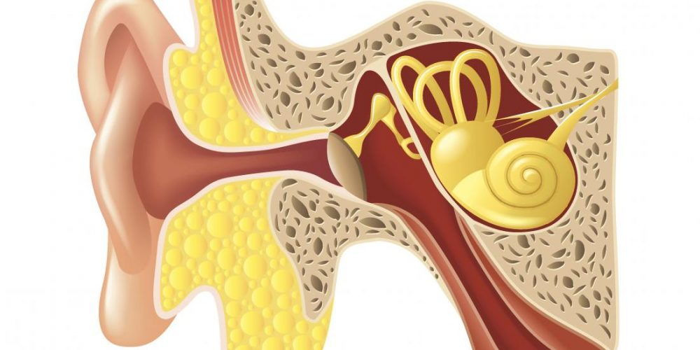 Bleeding from the ear: Causes and treatments