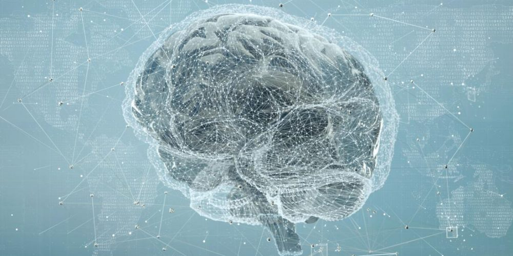 New evidence challenges 'extreme male brain' theory of autism