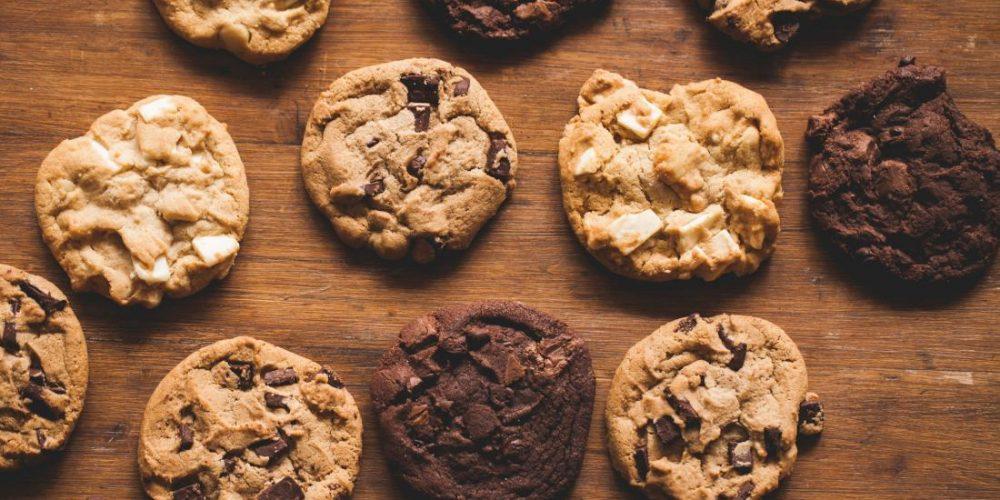 Study explores the neuroscience of overindulging
