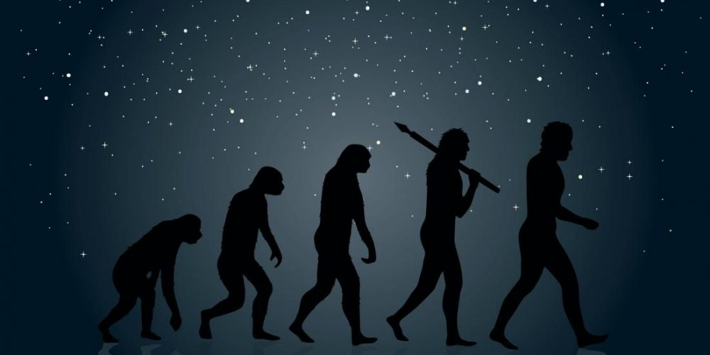 What's the link between 'hobbits' and modern humans?